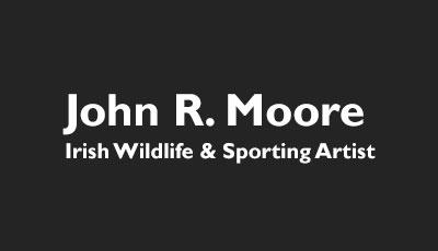 John R. Moore Irish Wildlife & Sporting Artist