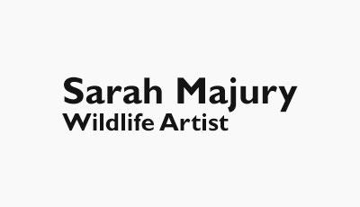 Sarah Majury Wildlife Artist