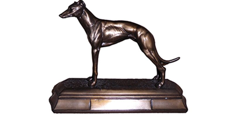 Terrier-Lurcher-Competition-3-800x400.jp