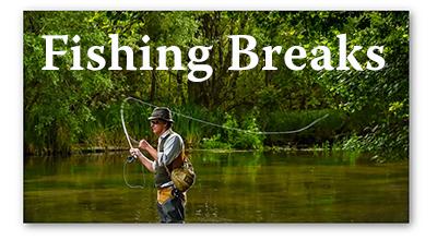 Fishing Breaks Logo